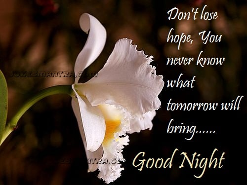 good night cute wallpaper facebook