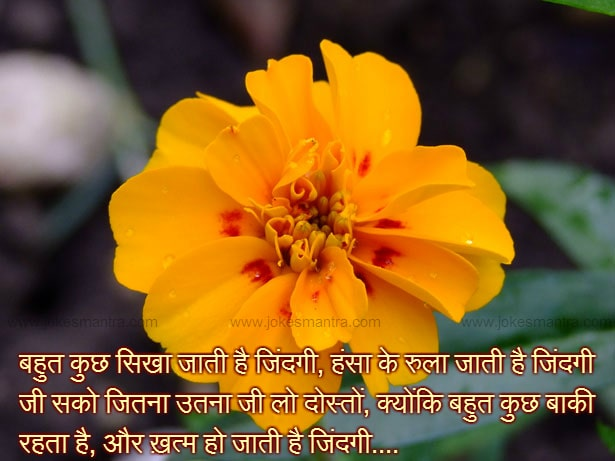 Good Day Sms Hindi